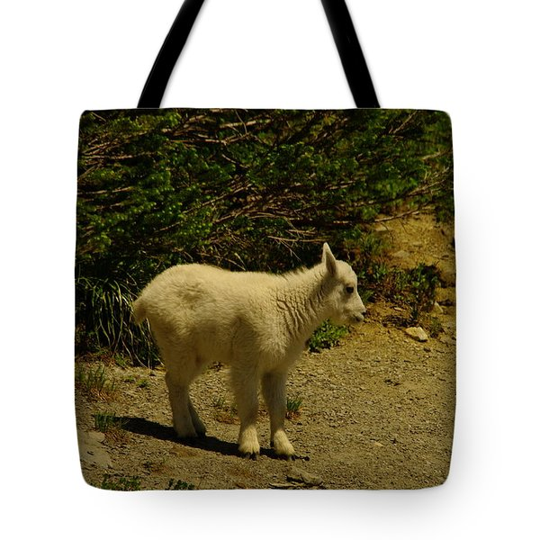 A Young Mountain Goat Tote Bag by Jeff Swan