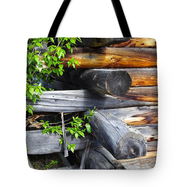 Tote Bag featuring the photograph Abandoned  by Cathy Mahnke