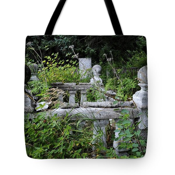 Tote Bag featuring the photograph Abandoned Cemetery 2 by Cathy Mahnke