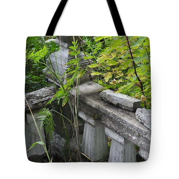 Tote Bag featuring the photograph Abandoned Cemetery by Cathy Mahnke