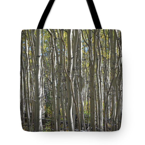 Tote Bag featuring the photograph Abc Aspen Bar Code by Brian Boyle