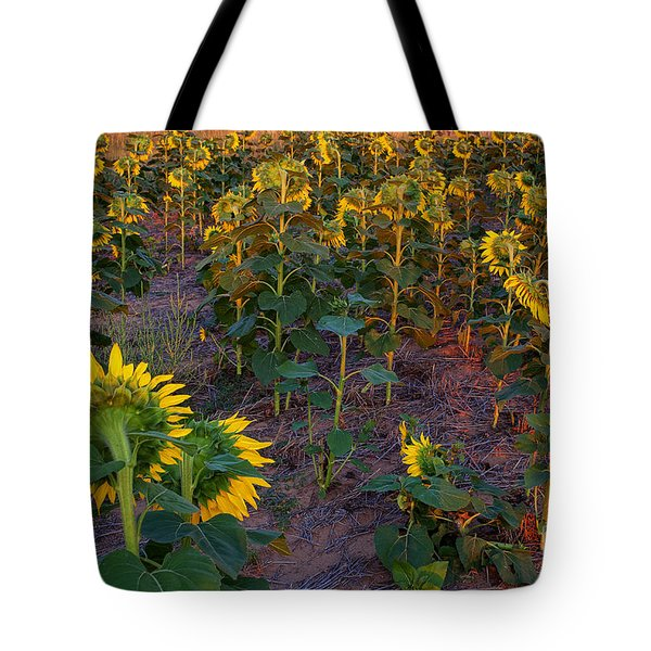Tote Bag featuring the photograph About Face by Jim Garrison