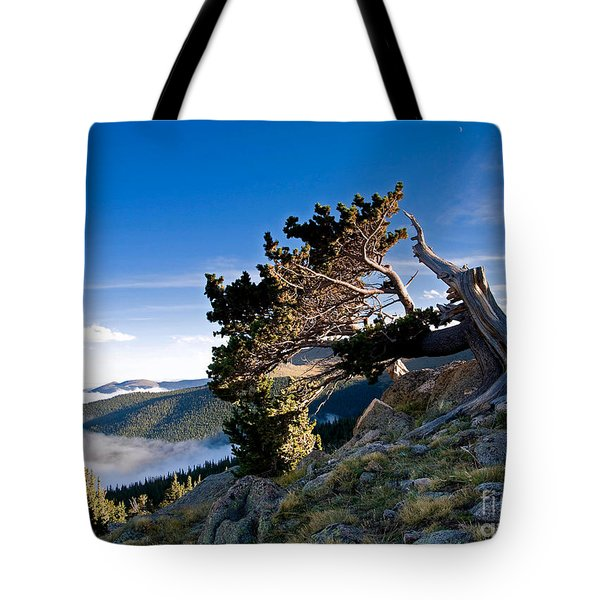 Tote Bag featuring the photograph Above It All by Jim Garrison