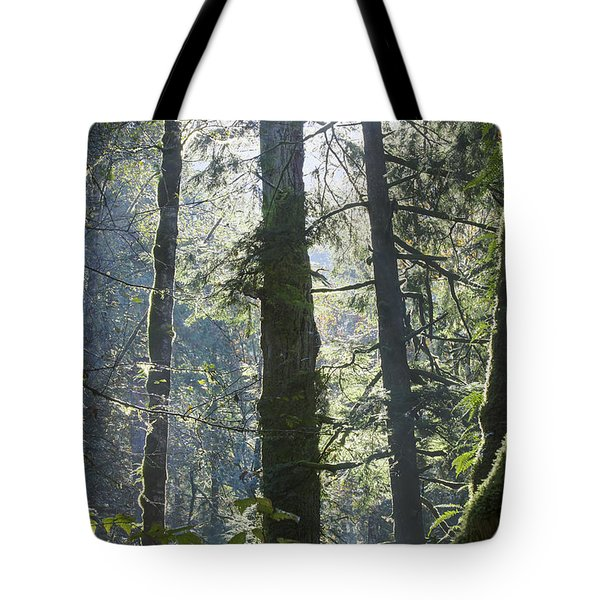 Above The Firs Tote Bag by Darleen Stry