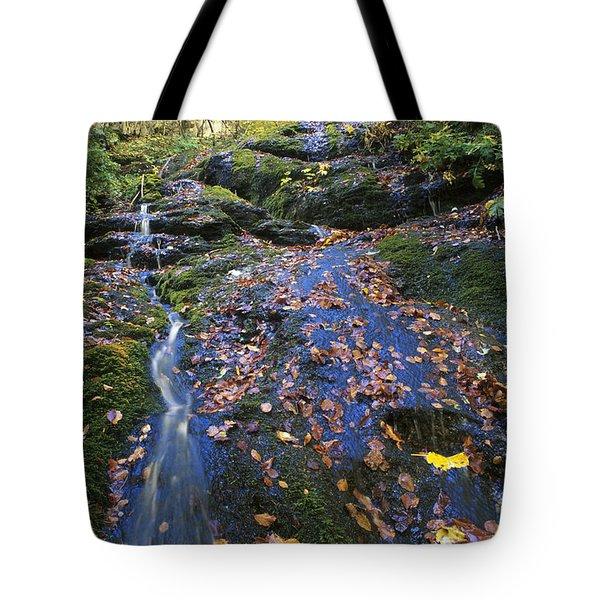 Abruzzo National Park Tote Bag by George Atsametakis