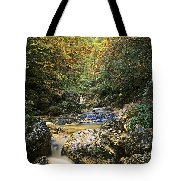 Abruzzo National Park In Italy Tote Bag by George Atsametakis