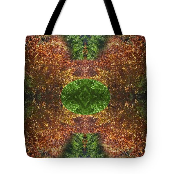 Abstract 164 Tote Bag by J D Owen