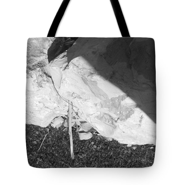 Tote Bag featuring the photograph Abstract Of Rock And Shadow by Esther Newman-Cohen