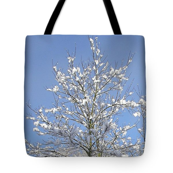 Ash Tree In Winter Tote Bag