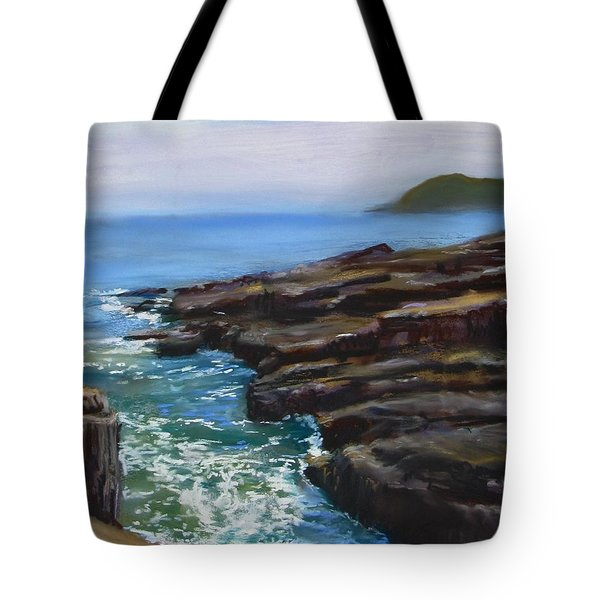 Acadia National Park  Tote Bag by Jack Skinner