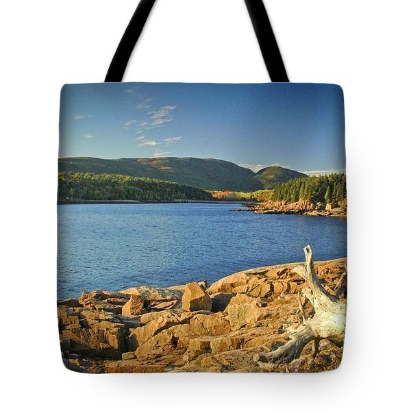 Acadia Otter Cove Tote Bag by Alana Ranney