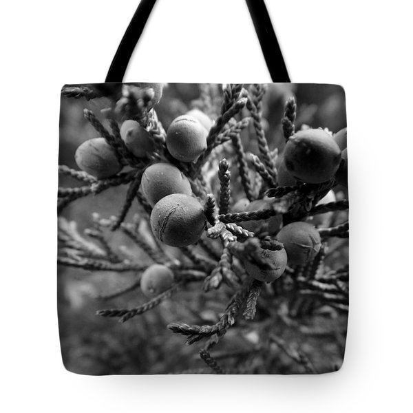 Tote Bag featuring the photograph Acclimated Bw by Elizabeth Sullivan