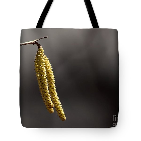 Tote Bag featuring the photograph Achew by Kenny Glotfelty