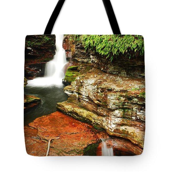 Adams Falls Tote Bag by James Kirkikis