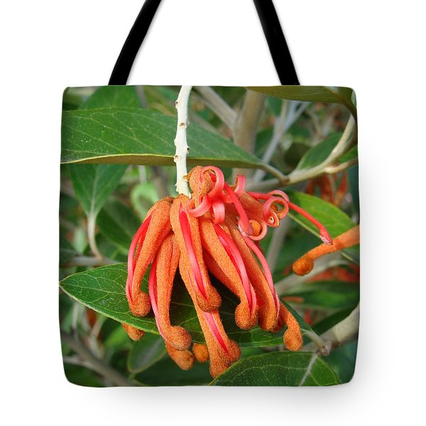 Tote Bag featuring the photograph Adaptable Exotic by Cheryl Hoyle