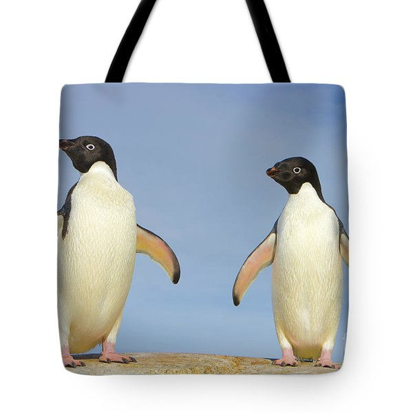 Adelie Penguin Duo Tote Bag