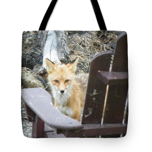 Tote Bag featuring the photograph Adirondack Envy by Brian Boyle