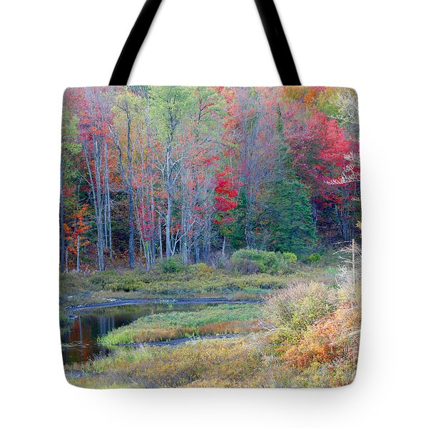 Adirondack Fall Tote Bag
