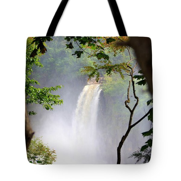 Adirondacks Waterfall Tote Bag by Patti Whitten