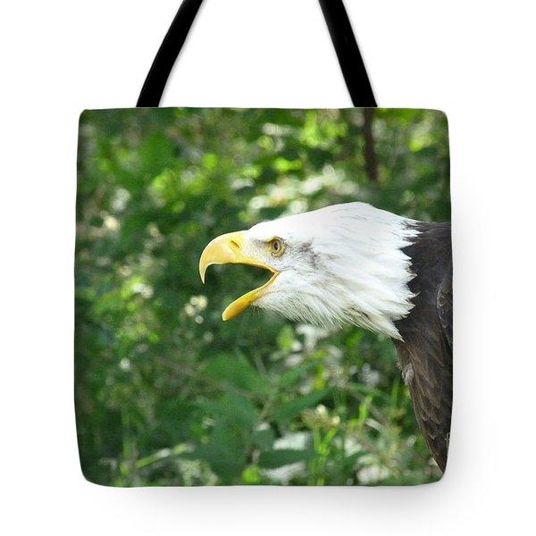 Tote Bag featuring the photograph Adler Raptor Bald Eagle Bird Of Prey Bird by Paul Fearn