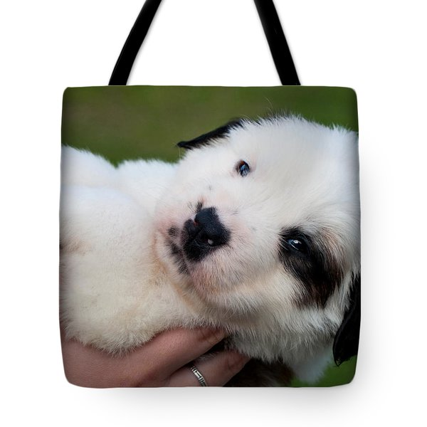 Adorable Hand Full Tote Bag by Mechala  Matthews