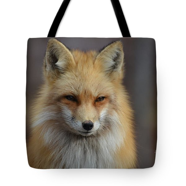 Adorable Red Fox Tote Bag