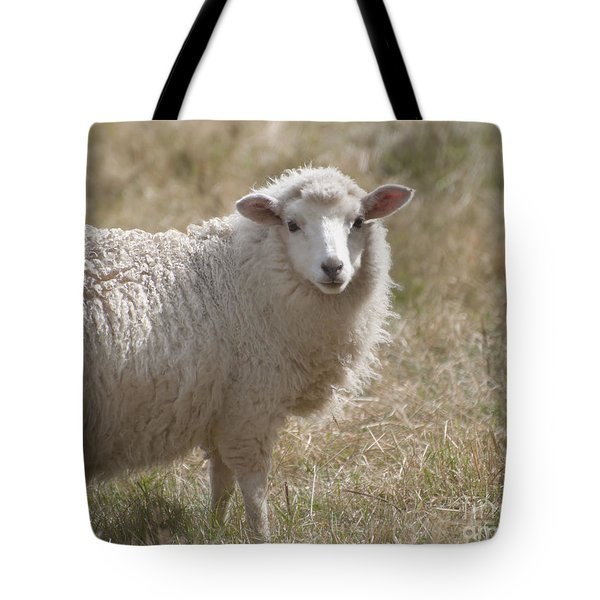 Adorable Sheep Tote Bag