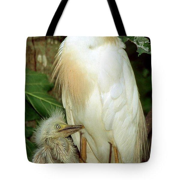 Adult Cattle Egret Tote Bag