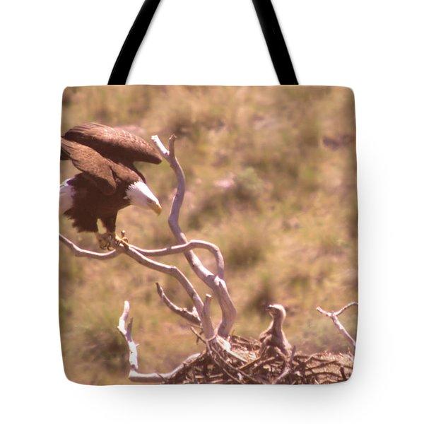 Adult Eagle With Eaglet  Tote Bag