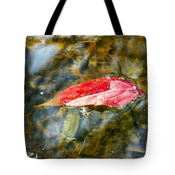 Afloat Tote Bag by Darleen Stry
