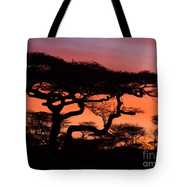 Tote Bag featuring the photograph Africa Sunrise by Chris Scroggins