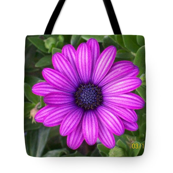 Tote Bag featuring the photograph African Beauty by Belinda Lee