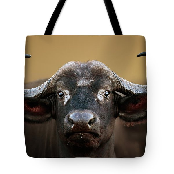 African Buffalo Cow Portrait Tote Bag