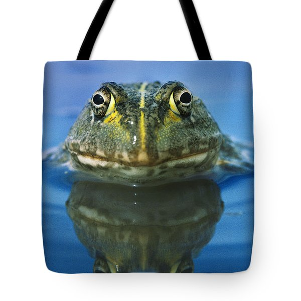 African Bullfrog Tote Bag by Frans Lanting MINT Images