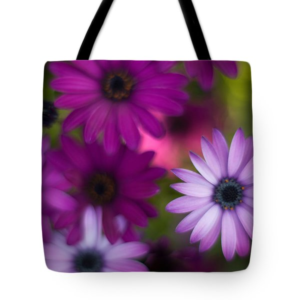 African Daisy Collage Tote Bag by Mike Reid