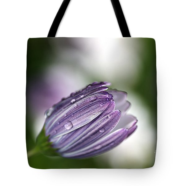 African Daisy Tote Bag by Joy Watson