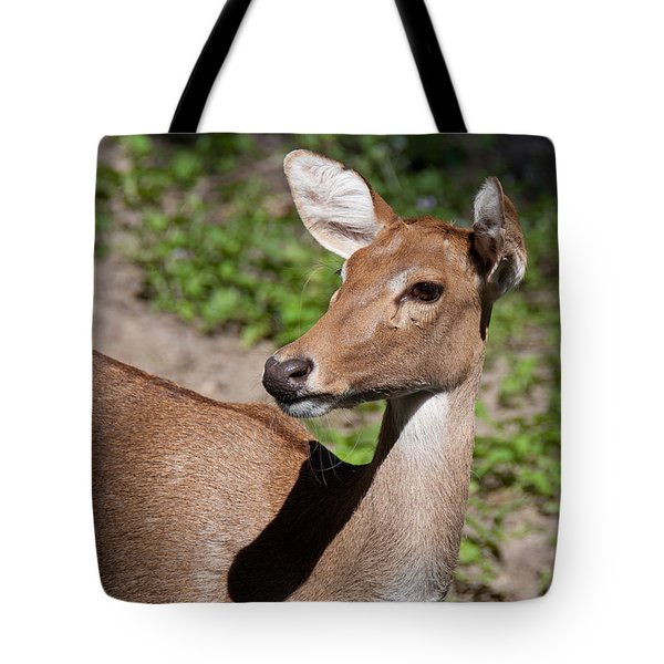 Tote Bag featuring the photograph African Deer by John Black
