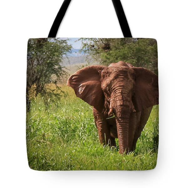 African Desert Elephant Tote Bag