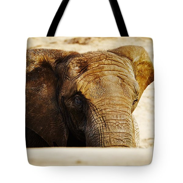 African Elephant Behind A Hill Tote Bag