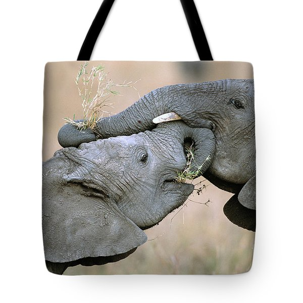 African Elephant Calves Playing  Tote Bag