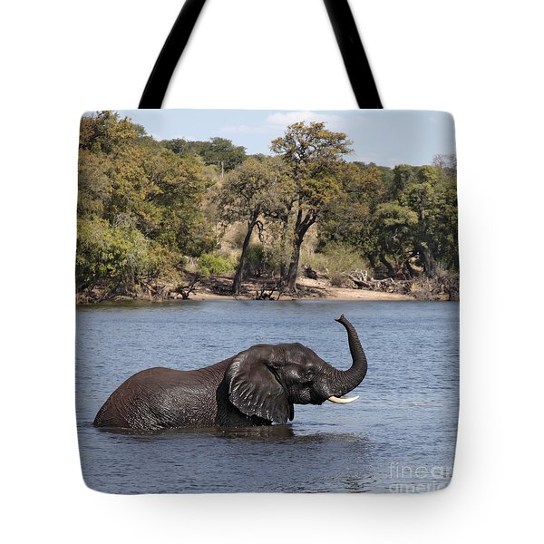 Tote Bag featuring the photograph African Elephant In Chobe River  by Liz Leyden