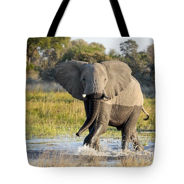 Tote Bag featuring the photograph African Elephant Mock-charging by Liz Leyden