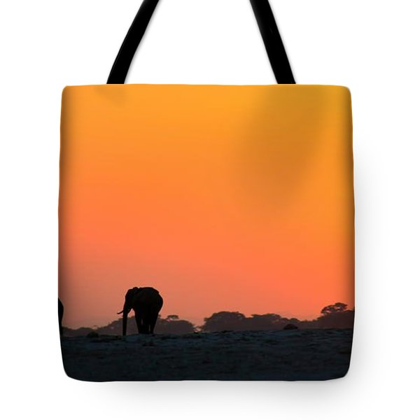 Tote Bag featuring the photograph African Elephant Sunset by Amanda Stadther