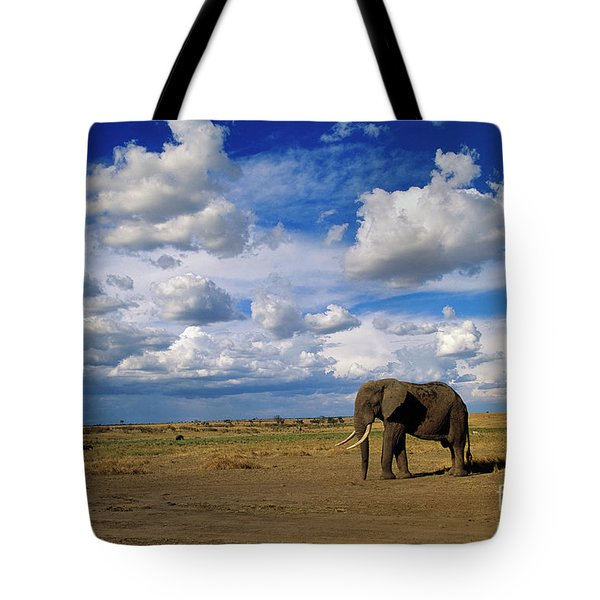 African Elephant Walking Masai Mara Tote Bag