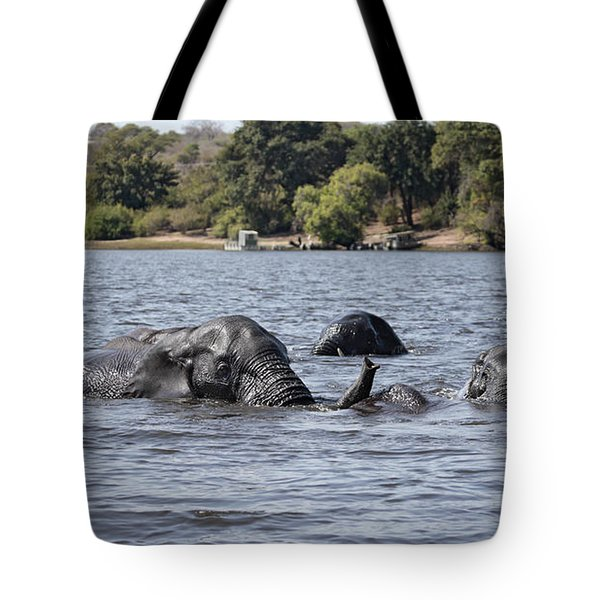 Tote Bag featuring the photograph African Elephants Swimming In The Chobe River by Liz Leyden