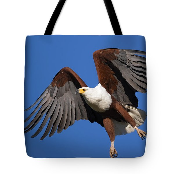 African Fish Eagle Tote Bag by Johan Swanepoel