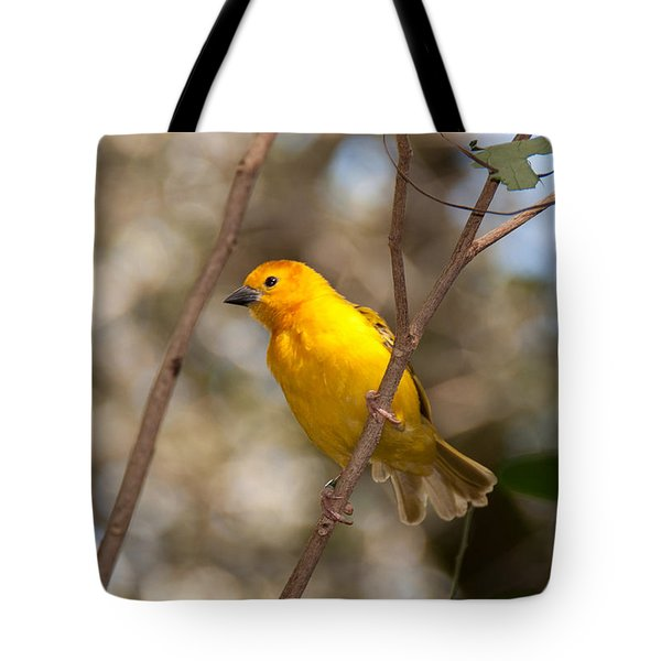 Tote Bag featuring the photograph African Golden Weaver by John Black
