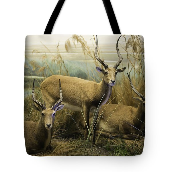 African Impalas Tote Bag by Diego Re