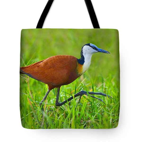 African Jacana Tote Bag by Tony Beck