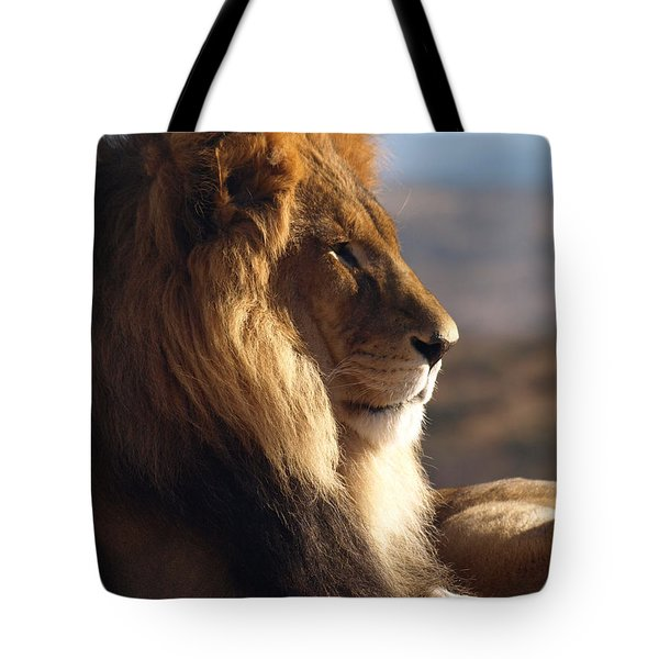 Tote Bag featuring the photograph African Lion by James Peterson
